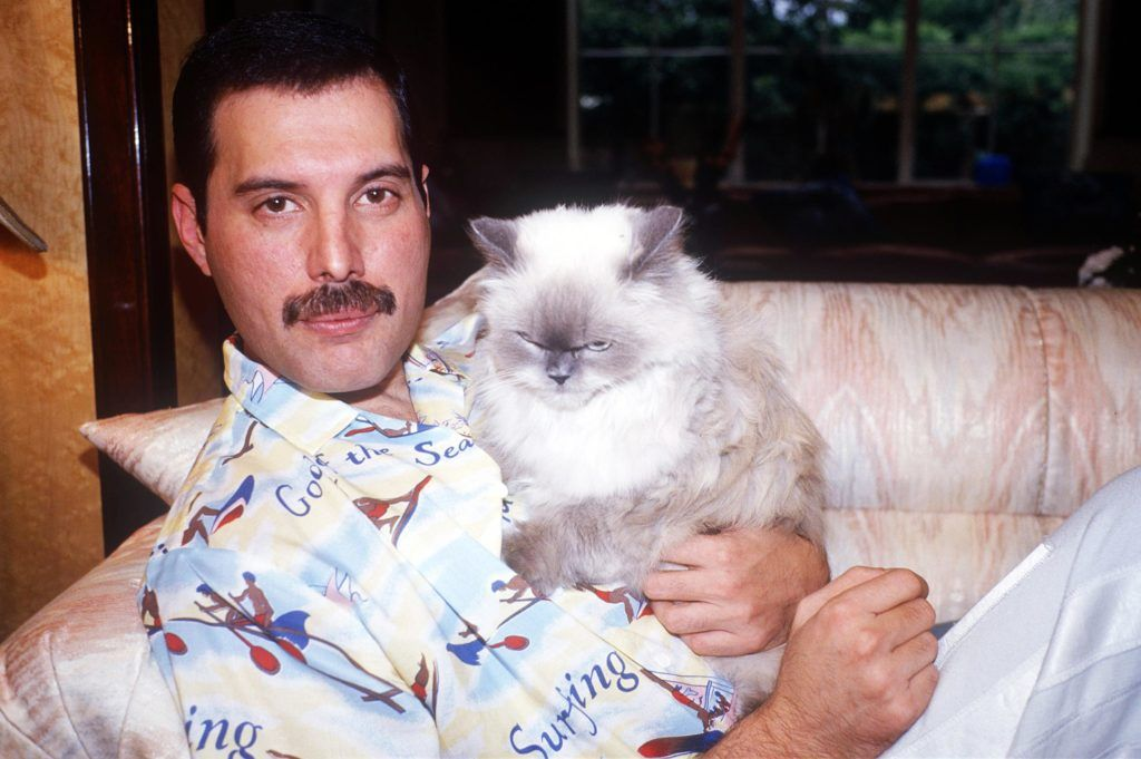 Freddie Mercury & Tiffany.