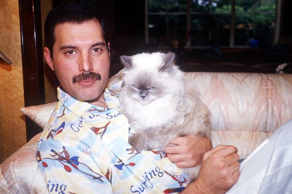 Freddie Mercury & Tiffany.