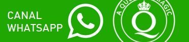 Canal WhatsApp AQOM